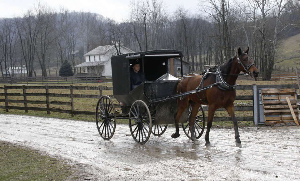 Photo - In this photo made on Tuesday, Jan. 29, 2013, an Amish buggy is driven down the road between the farms in Bergholz, Ohio that are worked by the families of sixteen men and women facing sentencing Friday, Feb. 8, 2013 in beard-cutting attacks on fellow Amish in Ohio. The defendants want leniency so they can return to their homes and farms, to teach their sons a trade and their daughters how to sew, cook and keep house. (AP Photo/Keith Srakocic)