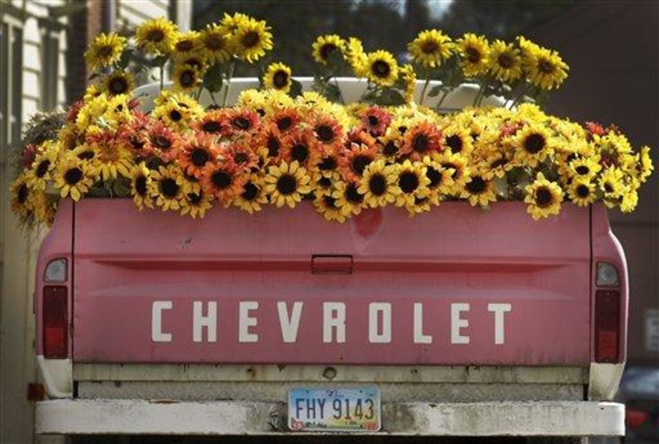 As part of a Fall seasonal display, the bed of an old Chevy pickup truck is filled with flowers outside a shop in Chagrin Falls, Ohio on Tuesday, Oct. 25, 2011.  (AP Photo/Amy Sancetta)