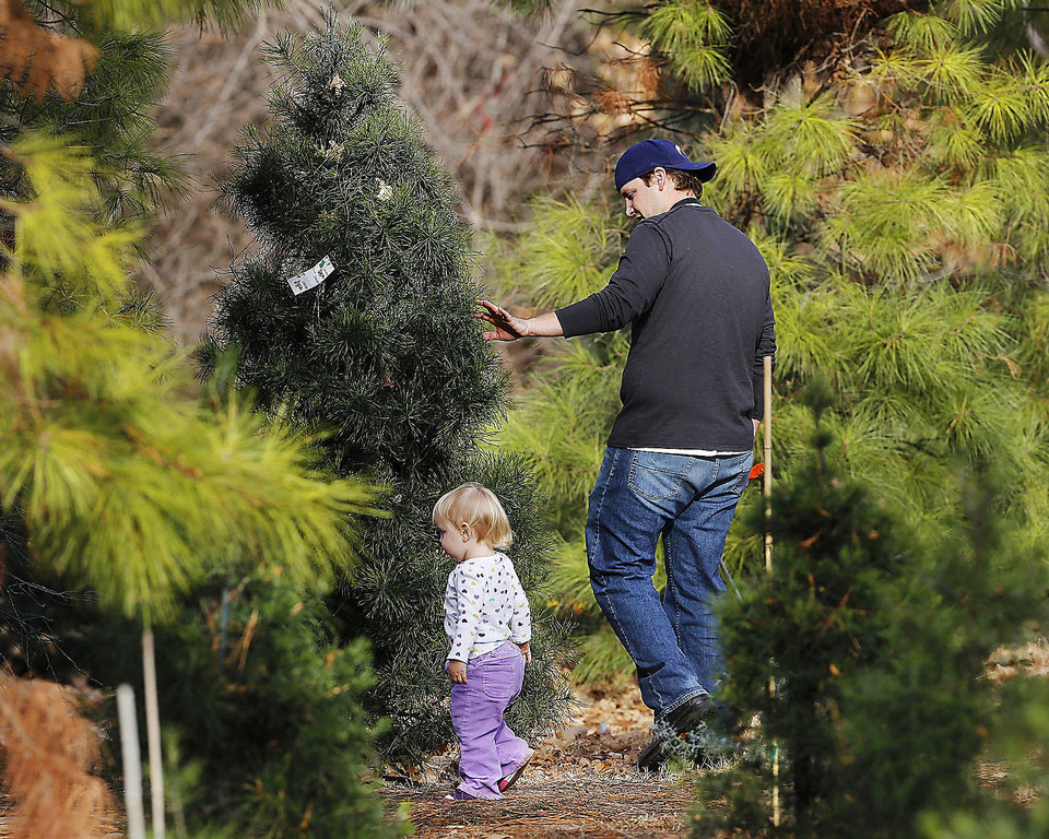 Chad Barnes, of Oklahoma City, with daughter, Adelyn, 17 months old, searches for the right Christmas tree Thursday at Sorghum Mill Christmas Tree and Blackberry Farm on N Midwest Boulevard, north of Coffee Creek.  Photo by Jim Beckel, The Oklahoman