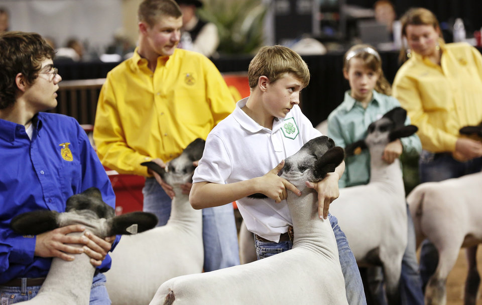 Photo - Chad McGolden, center, stands with other entrants, parading their sheep for the judges at the Oklahoma Youth Expo at State Fair Park on Tuesday,   March 18, 2014. McGolden is a member of the Fairview 4H Club.  Photo by Jim Beckel, The Oklahoman