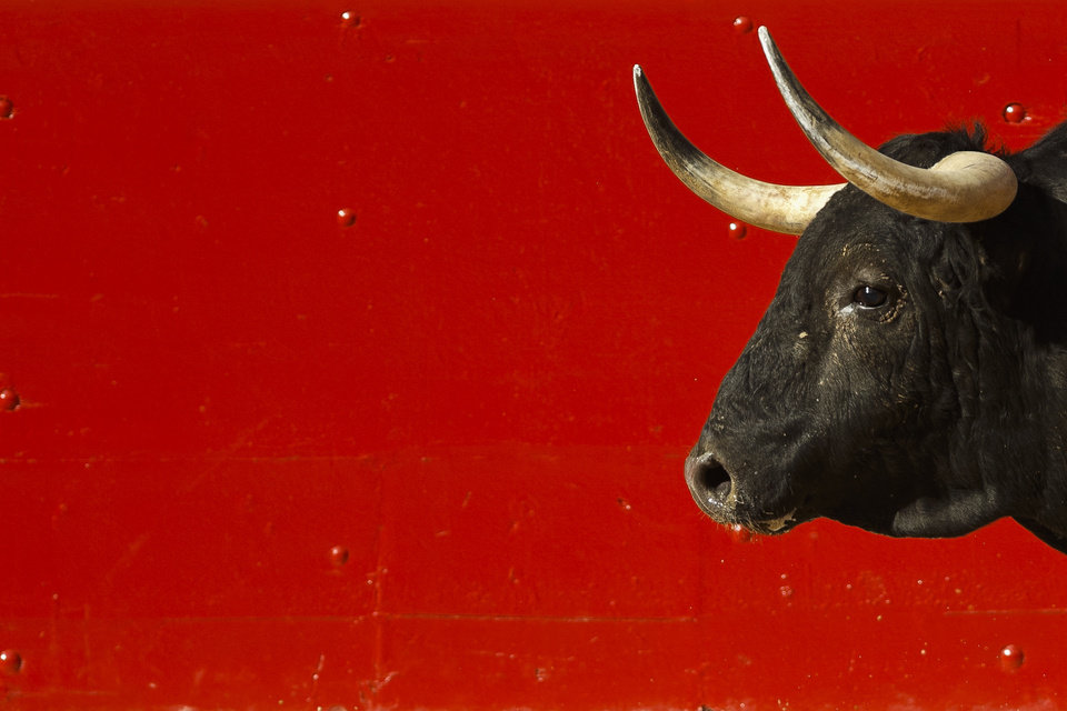Photo - A bull is seen in the arena during a bullfight of the San Fermin festival, in Pamplona, Spain, Wednesday, July 9, 2014. Revelers from around the world arrive in Pamplona every year to take part on some of the eight days of the running of the bulls glorified by Ernest Hemingway's 1926 novel