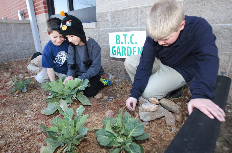Joshua Swisher, 9, Caden Trammell, 10, and Charlie Schultheiz, 9, from left, work in their garden at St. Mary\'s Episcopal Elementary School. PHOTO BY DAVID MCDANIEL, THE OKLAHOMAN. David McDaniel - THE OKLAHOMAN