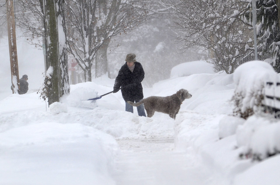Photo - Michelle Kottke shovels snow with the help of her dog Harlee in Barrington, Ill., Thursday, Jan. 2, 2014. The New Year's Day snow storm stretched into Thursday for parts of Illinois, bringing double-digit snow totals to the suburbs of Chicago. (AP Photo/Daily Herald, Bob Chwedyk) MANDATORY CREDIT; MAGS OUT;  TV OUT