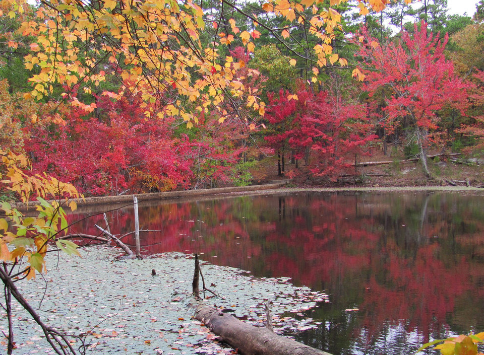 Photo - Vividly colored trees are seen along the shoreline of the lake at Robbers Cave State Park. PHOTO PROVIDED.
