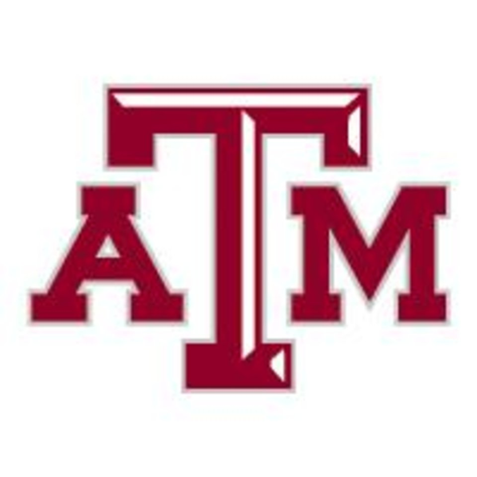 Photo - TEXAS A&M UNIVERSITY / LOGO / BUTTON / BUG / GRAPHIC