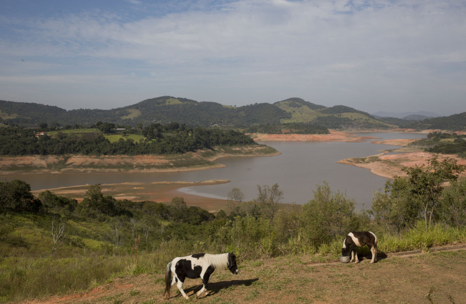 Photo - In this May 14, 2014 photo, a horse walks in a field near the Jaguari dam, which is part of the Cantareira System, responsible for providing water to the Sao Paulo metropolitan area, in Braganca Paulista, Brazil. The worst drought in more than 80 years is hitting Sao Paulo, Brazil's largest city just as it prepares for the tens of thousands of foreigners expected at the tournament opener. (AP Photo/Andre Penner)