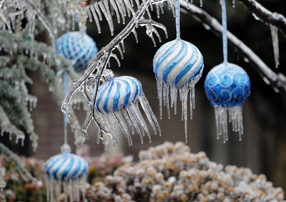 Photo - A thick coat of ice surrounds Christmas ornaments in trees on Saturday, Dec. 21, 2013 in Norman, Okla.  Photo by Steve Sisney, The Oklahoman