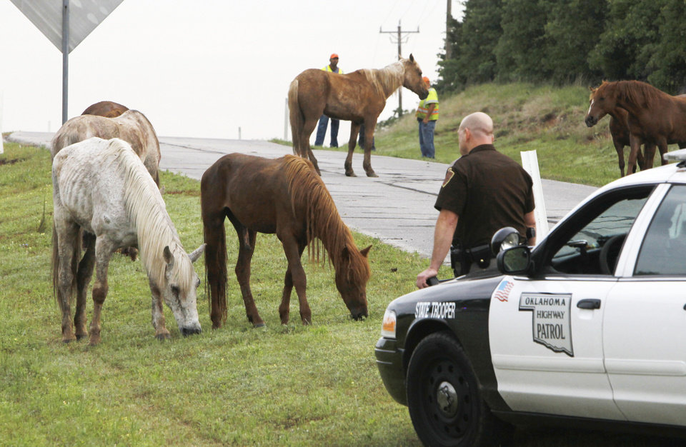Photo - Oklahoma Highway Patrol and state Transportation Department workers keep a horses together near NE 122 and Sooner Road after a trailer overturned.  PHOTO BY PAUL HELLSTERN, THE OKLAHOMAN