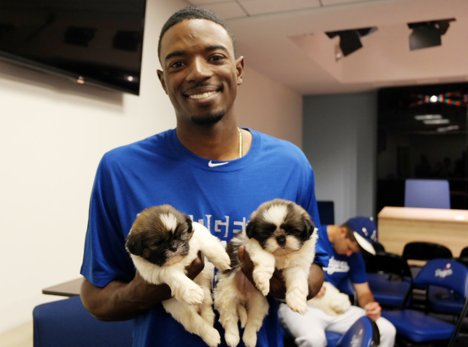 Photo - In an image from video provided by the Los Angeles Dodgers, Los Angeles Dodger second baseman Dee Gordon holds puppies used in a video June 17, 2014, at Dodger Stadium in Los Angeles. The video was part of a promotion to get people to vote for baseball players for the All-Star Game in Minneapolis on July 15. (AP Photo/Los Angeles Dodgers)