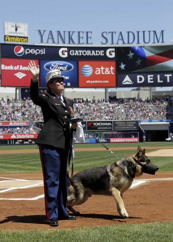 Photo -   Former Marine Cpl. and Purple Heart recipient Megan Leavey and combat dog Sgt. Rex participate in a ceremony before a baseball game between the New York Yankees and the Seattle Mariners at Yankee Stadium in New York, Sunday, May 13, 2012. Through two tours of duty in Iraq Sgt. Rex was by Leavey's side. The pair worked more than 100 missions searching for roadside bombs, were injured in the line of duty and went through physical therapy together. After five years of waiting for Rex's service to end and filling out paperwork, Leavey finally won approval to bring the 11-year-old German Shepherd home. (AP Photo/Seth Wenig)