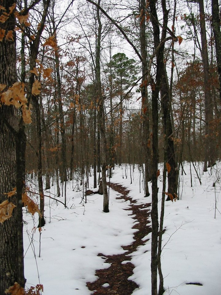 Hiking trail during winter in Octavia, Okla.<br/><b>Community Photo By:</b> Billy Sparks<br/><b>Submitted By:</b> Billy, Choctaw