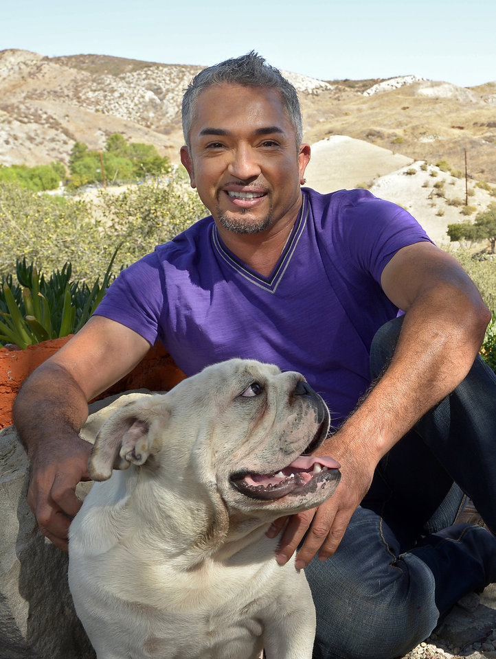 Photo -   In this Oct. 18, 2012 photo, Cesar Millan poses with his English Bull Dog George at his Dog Psychology Center, in Santa Clarita, Calif. Millan has a new television show, book, tour and documentary.