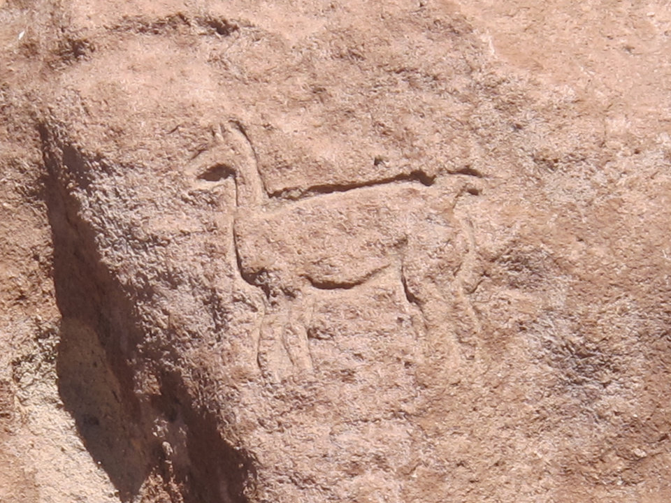 This August 2012 photo shows a rock carving of a llama in Yerbas Buenas, San Pedro de Atacama, in Chile. Thousands of petroglyphs decorate these rocks. (AP Photo/Karen Schwartz)