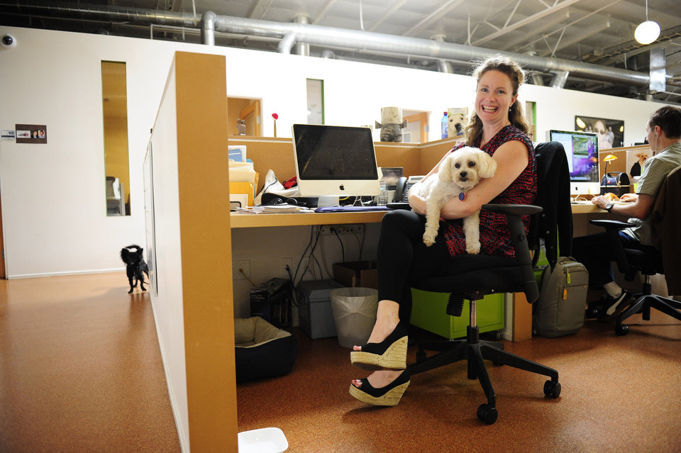 Photo -   Erin McCormack poses with her dog, Dolly, a Maltese mix, a while at work at Authentic Entertainment in Burbank, Calif., Monday, June 11, 2012. Dolly is one of millions of dogs that accompany their owners to dog-friendly businesses across the country every day. Even more will join her next Friday for Take Your Dog to Work Day. (AP Photo/Grant Hindsley)
