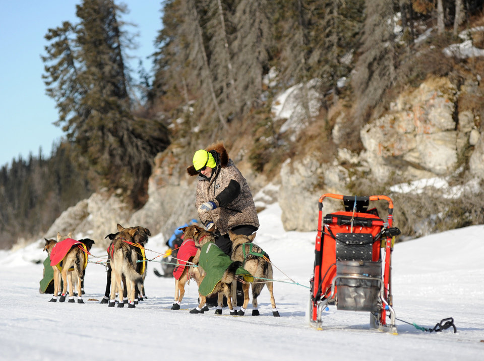 Photo - Iditarod musher Jeff King, from Denali, Alaska, is the first musher to leave the White Mountain checkpoint during the 2014 Iditarod Trail Sled Dog Race on Monday, March 10, 2014. (AP Photo/The Anchorage Daily News, Bob Hallinen)