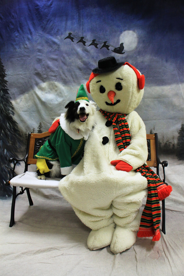 """Buddy the Elf"" posed for a picture with Frosty the Snowman at the Bark for Life Fundraiser.   Photo provided.   <strong></strong>"