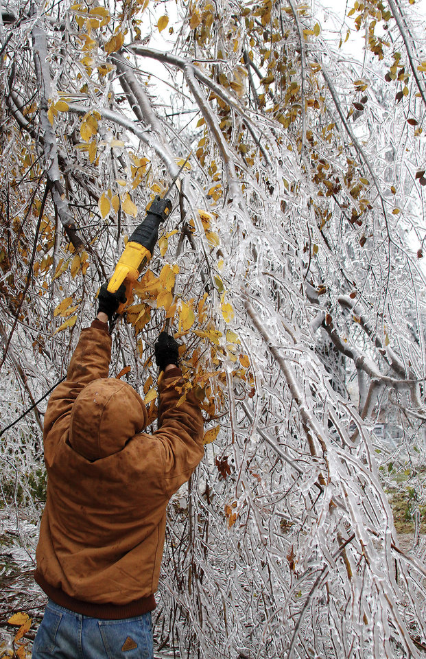 Photo - A man works at trimming frozen branches in El Reno Monday, November 30, 2015 from the weekend's ice storm. El Reno Tribune