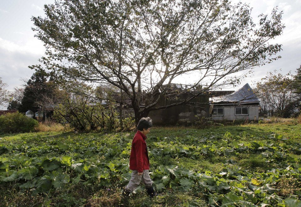 "In this Nov. 7, 2012 photo, farmer Keiko Kikukawa walks through her field where she just finished harvesting organic-grown rhubarbs  in Rokasho village, Aomori Prefecture, northern Japan. By hosting a high-tech facility that would convert spent fuel into a plutonium-uranium mix designed for the next generation of reactors, Rokkasho was supposed to provide fuel while minimizing nuclear waste storage problems. Those ambitions are falling apart because years of attempts to build a ""fast breeder"" reactor, which would use the reprocessed fuel, appear to be ending in failure. ""It's so unfair that Rokkasho is stuck with the nuclear garbage from all over Japan,"" Kikukawa said. ""And it's not going to go away even if the Rokkasho plant stops immediately. We're dumping it all onto our offsprings to take care of. It's so irresponsible."" (AP Photo/Koji Sasahara)"