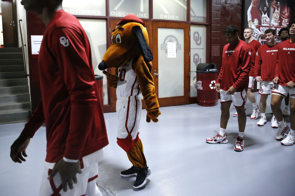 Photo - Oklahoma basketball mascot Top Daug leads the team out to the court before an NCAA college basketball game between the University of Oklahoma Sooners (OU) and the University of Kansas Jayhawks at Lloyd Noble Center in Norman, Okla., Tuesday, Jan. 14, 2020. [Bryan Terry/The Oklahoman]