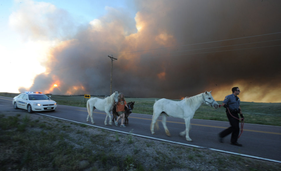 Photo - El Paso County Sheriff's Deputy Dan Cukowski helps evacuee Linda Davies walk her livestock out from the evacuated area on Tuesday, June 11, 2013. A wildfire in a heavily wooded residential area northeast of Colorado Springs led to the mandatory evacuations of more than 1,000 homes, including some worth more than $1 million, El Paso County Sheriff Terry Maketa said. (AP Photo/The Gazette, Jerilee Bennett)