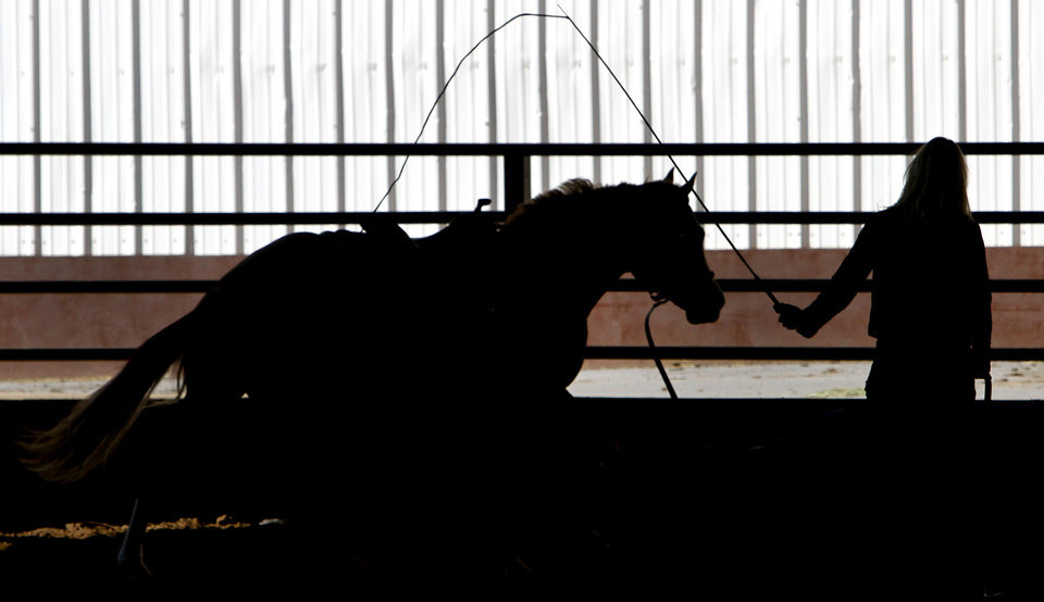 "Denise Thompson exercises ""Trace of Sudden"" at the  2012 AQHA World Championship Show at State Fair Park in Oklahoma City, Friday, Nov. 16, 2012. Thompson is from Beloit. Kan. Photo By Steve Gooch, The Oklahoman <strong>Steve Gooch - The Oklahoman</strong>"