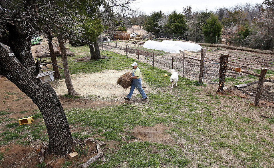 Matthew Miller carries a bale of straw in his gardening area in eastern Oklahoma County. Photo by Jim Beckel, The Oklahoman