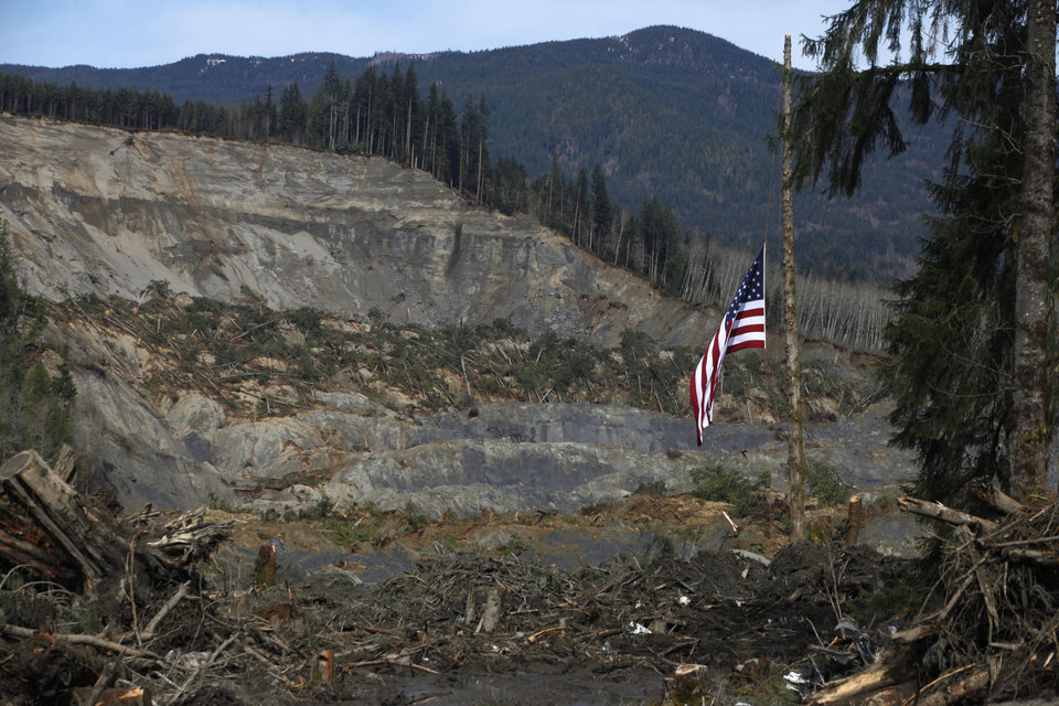 Photo - An American flag hangs from the only cedar post left standing at the scene of a deadly mudslide, Monday, March 31, 2014, in Oso, Wash. (AP Photo/The Herald, Sofia Jaramillo, Pool)