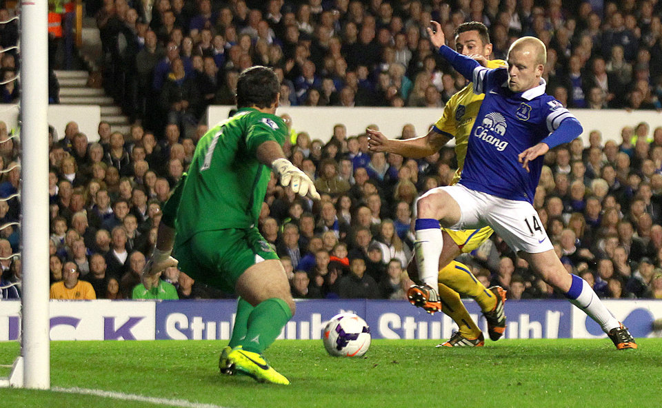 Photo - Everton's Steven Naismith, right,  scores in the game against Crystal Palace during their English  Premier League match at Goodison Park, Liverpool, England  Wednesday April 16, 2014. (AP Photo/Barry Coombs/PA) UNITED KINGDOM OUT