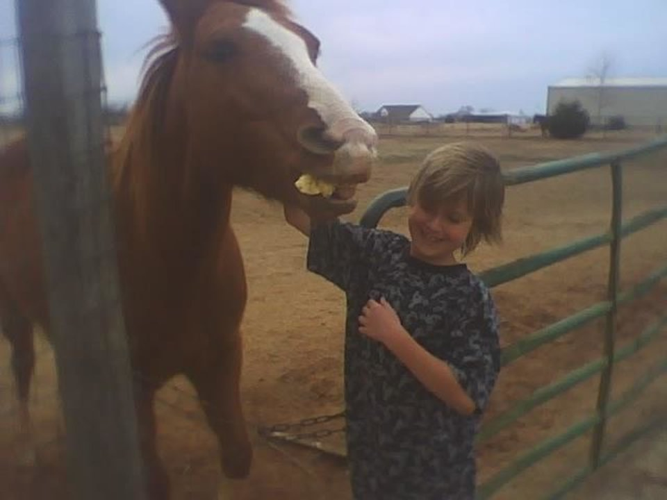 Can I bite you.. Kash fighting with the horses trying to bite him<br/><b>Community Photo By:</b> Tama<br/><b>Submitted By:</b> Tama, Midwest