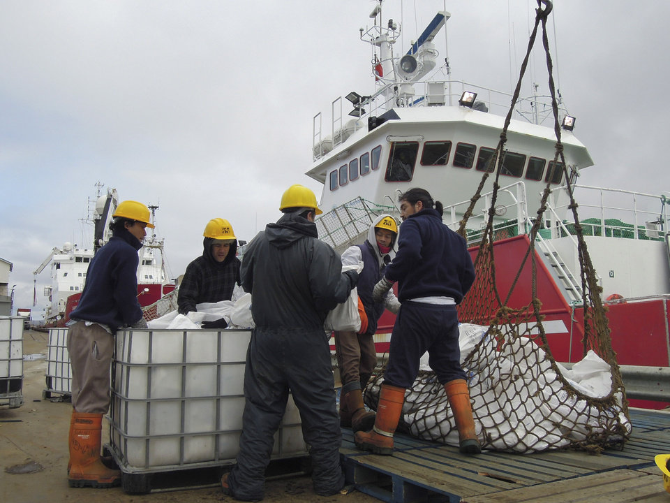 Photo - In this March 14, 2013 photo, workers offload fish from a fishing ship in Port Stanley, Falklands Islands. Fish are suffering from the fight between Argentina and the Falkland Islands. Scientists say the western South Atlantic Ocean claimed by both governments is the only place in the world where scientists don't jointly manage their shared seas. As a result, unlicensed boats are able to scoop up vast quantities of squid and other species. (AP Photo/Paul Byrne)