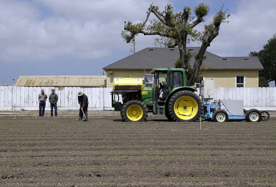 Photo - In this May 23, 2013, photo, the lettuce bot is dragged by a tractor during tests in Salinas, Calif. In the Salinas Valley, the lettuce capital of the world, entrepreneurs with the Silicon Valley company Blue River Technology are testing the Lettuce Bot, a boxy robotic machine that can thin fields of lettuce, a job that now requires detailed hand work by 20 farm workers. (AP Photo/Marcio Jose Sanchez)