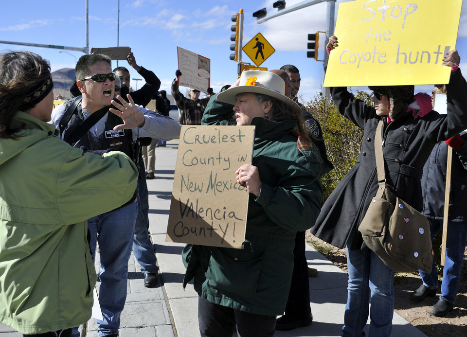"CORRECTS DATE TO SATURDAY, NOV. 10 INSTEAD OF FRIDAY, NOV. 16 - In this Saturday, Nov. 10, 2012 photo, Esteban Marquez, second from left, a supporter of a coyote hunting contest organized by Gunhawk Firearms, engages in a heated discussion with protester Jean Crawford, center, holding a sign that reads ""Cruelest County in New Mexico Valencia County,"" in Los Lunas, N.M. Police separated Marquez and other supporters of the coyote hunt from the protesters shortly after Marquez and Crawford's conversation. Under the terms of the contest, hunters in New Mexico have two days this weekend to shoot and kill as many coyotes as they can, and the winners get their choice of a free shotgun or a pair of semi-automatic rifles. (AP Photo/Albuquerque Journal, Marla Brose)"