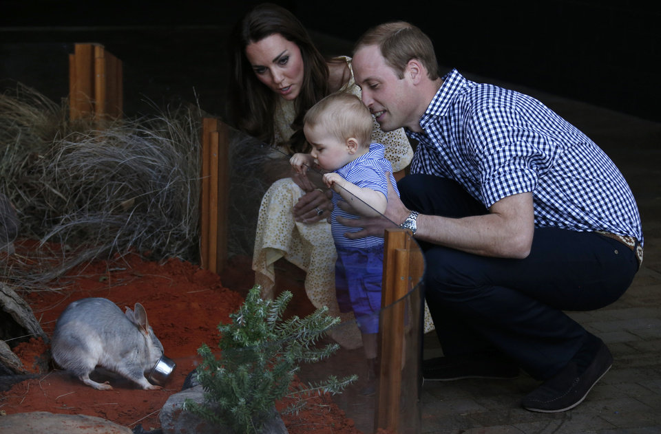 Photo - Britain's Prince William and his wife Kate, the Duchess of Cambridge, watch their son Prince George looking at an Australian animal, called Bilby, which has been named after the young Prince, during a visit to Sydney's Taronga Zoo Sunday, April 20, 2014. The royal couple are on a 19-day official visit to New Zealand and Australia with their son George. (AP Photo/David Gray/Pool)