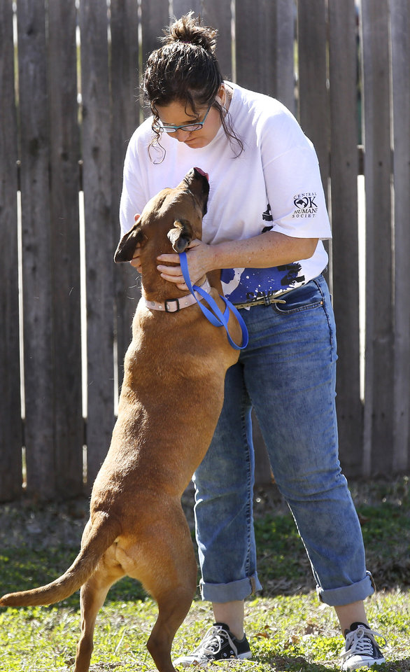 Photo - Susan Steck, a volunteer with the Central Oklahoma Humane Society, plays with Cher, a labrador mix while the dog is taken outside for exercise and to play.  Oklahoma City Animal Shelter's Mega Adoption event, held  from 9 a.m. to 7 p.m. Saturday, March 28, 2015,  and Sunday in the Hobby Arts and Crafts Building at State Fair Park. Volunteers from a number of animal welfare shelters, dog rescue groups and the humane society have pets available for adoption at the two-day event. Photo by Jim Beckel, The Oklahoman