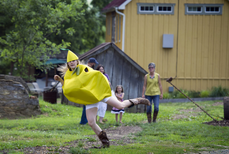 Photo - This photo taken June 26, 2014 shows Bloomery Plantation Distillery employee Allison Manderino, 28, transforming into The Lemon Dancer to entertain visitors to the distillery in Charles Town, W.Va. With its sweet fruit-flavored liqueurs, a working farm and eccentric cast of characters— including a dancing lemon — Bloomery Plantation Distillery has attracted tourists from every U.S. state and countries as far away as Laos and Iceland. The West Virginia mini-distillery is part of a growing agriculture tourism trend that advocates say can help revive struggling rural economies. Ag tourism refers to working farm enterprises geared to visitors, encompassing farm stands, pumpkin patches, barn dances, zip-line rides, pick-your-own berries, corn mazes and even weddings. (AP Photo/Cliff Owen)