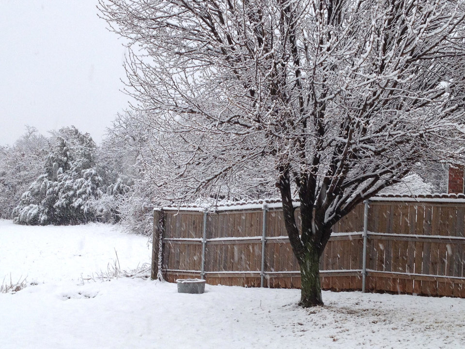 Snow in Midwest City Wednesday morning. Photo by Jim Beckel, The Oklahoman
