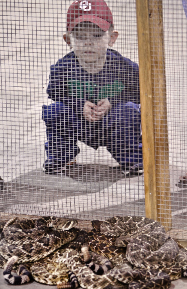 Devin Stanley, 3, braves his way to get a closer look at rattle snakes during the Backwoods Hunting and Fishing Show on Friday, Feb. 24, 2012 in Oklahoma City, Okla.  Photo by Chris Landsberger, The Oklahoman