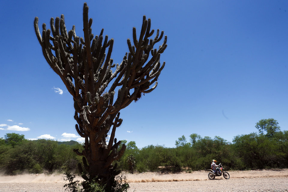Photo - Laila Sanz, of Spain, rides her Honda motorcycle past a large cactus during the Dakar Rally between the cities of San Miguel de Tucuman and Salta, Argentina, Friday, Jan. 10, 2014. (AP Photo/Victor R. Caivano)