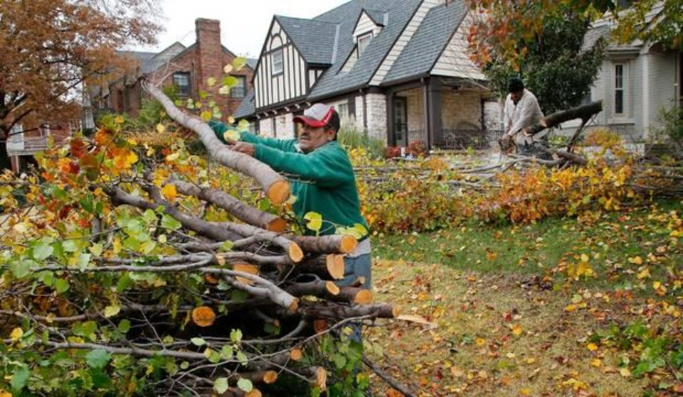 Photo - Downed tree limbs were stacked following a 2015 ice storm. [The Oklahoman file]