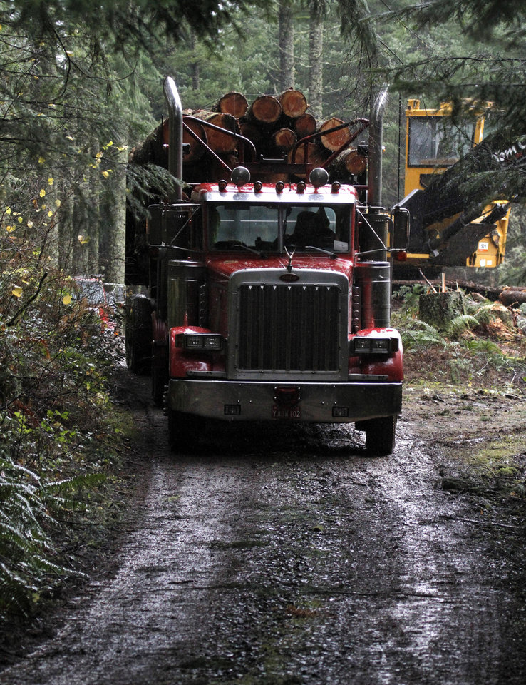 Photo - A loaded logging truck heads down the road in the forest near Banks, Ore., Friday, Nov. 30, 2012.  The U.S. Supreme Court will hear a case Monday, Dec. 3, regarding regulation of water runoff from logging roads.(AP Photo/Don Ryan)