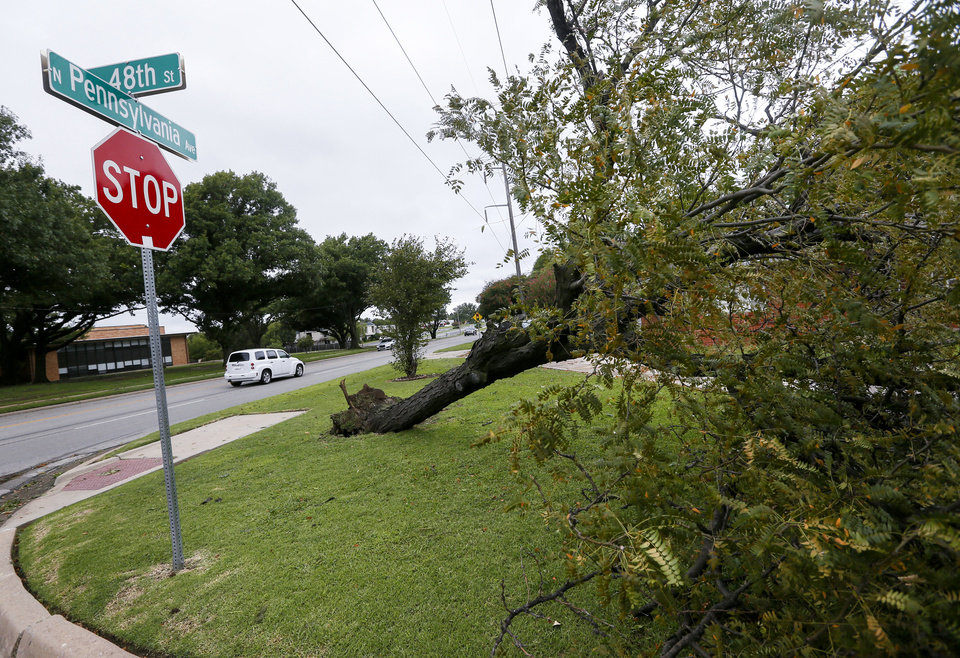 Photo - An uprooted tree at NW 48 St. and Pennsylvania Ave. after thunderstorms went through the metro area, in Oklahoma City, Tuesday, Aug. 27, 2019. [Nate Billings/The Oklahoman]