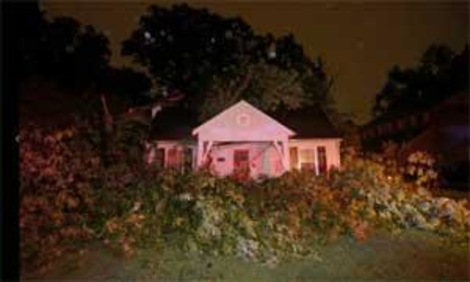Photo - A tree lays across the roof of Tulsa World Photo Editor Christopher Smith's home on Detroit in Tulsa. The tree fell when a storm hit the area. CHRISTOPHER SMITH / Tulsa World