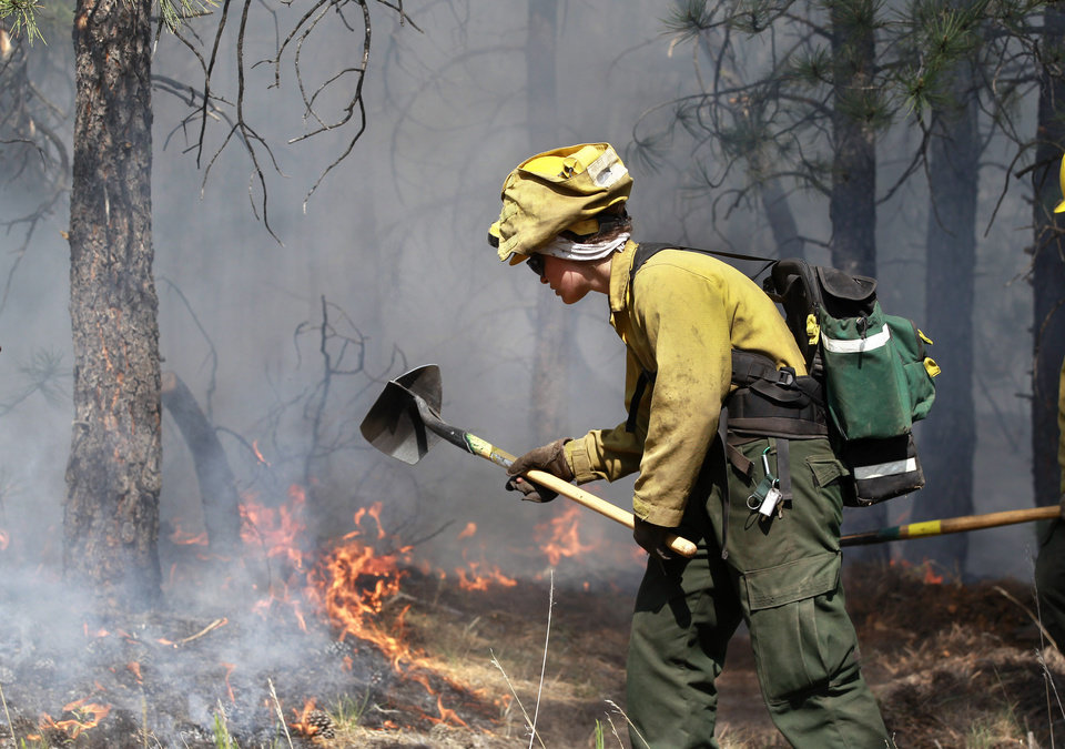 Photo - An AmeriCorps volunteer firefighter assigned to the El Paso County Sheriff's Office, Woodland Fire Crew, helps contain a spot fire in an evacuated area of forest, ranches and residences, in the Black Forest wildfire area, north of Colorado Springs, Colo., on Thursday, June 13, 2013. According to officials, at least 360 homes have been burned, and 38,000 people have been evacuated since the fire began earlier in the week. (AP Photo/Brennan Linsley)