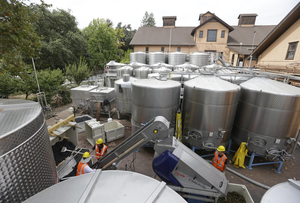 Photo - Workers sort Pinot Noir grapes with the earthquake damaged historic winery building dating from 1886 in the background at Trefethen Family Vineyards Friday, Aug. 29, 2014, in Napa, Calif. Harvest resumed at the winery on Friday in addition to the arrival of crews to shore up the leaning historic building. The 6.0-earthquake that damaged buildings and left scores of people injured in California's wine country was the largest temblor to hit the San Francisco Bay Area since the 6.9-magnitude Loma Prieta earthquake in 1989. (AP Photo/Eric Risberg)