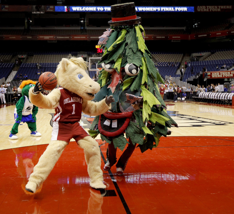 OU mascot Sooner drives past the Stanford Tree before practice for the Final Four of the NCAA women's  basketball tournament at the Alamodome in San Antonio, Texas., on Saturday, April 3, 2010.  The University of Oklahoma will play Stanford on Sunday, April 4, 2010.