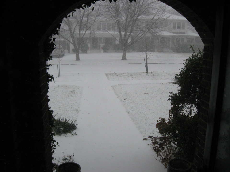 Looking out the front door.  Submitted by Mitchell Ruzzoli.