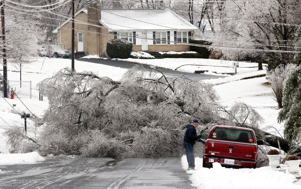Photo - A ice-covered tree fell across Milam Drive east of Winchester, Va., Wednesday Feb. 5, 2014. (AP Photo/The Winchester Star, Scott Mason)