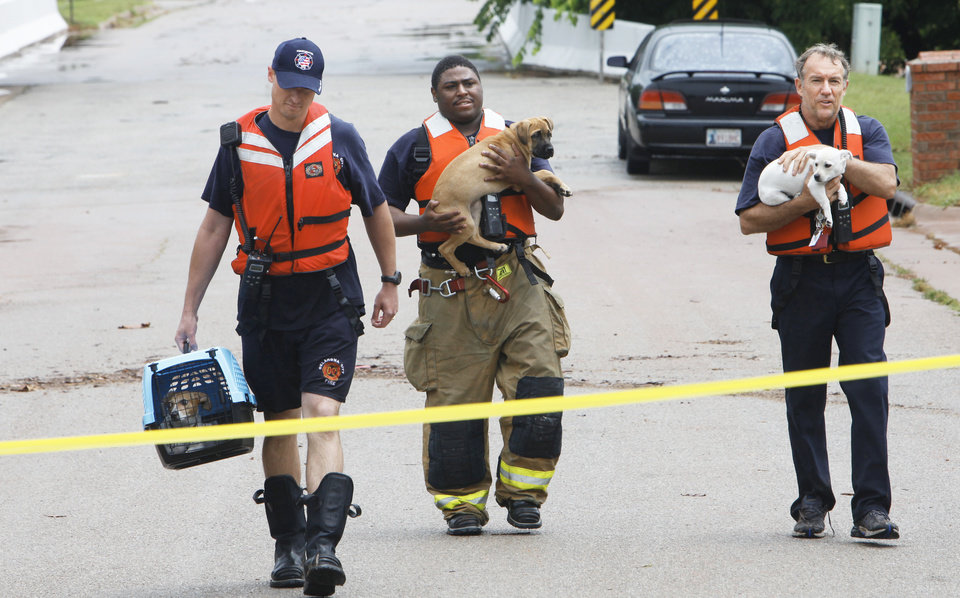 Photo - Three Oklahoma City firefighters carry dogs rescued Monday from flooding in The Valley in the Edmond area.Photo by David McDaniel, The Oklahoman