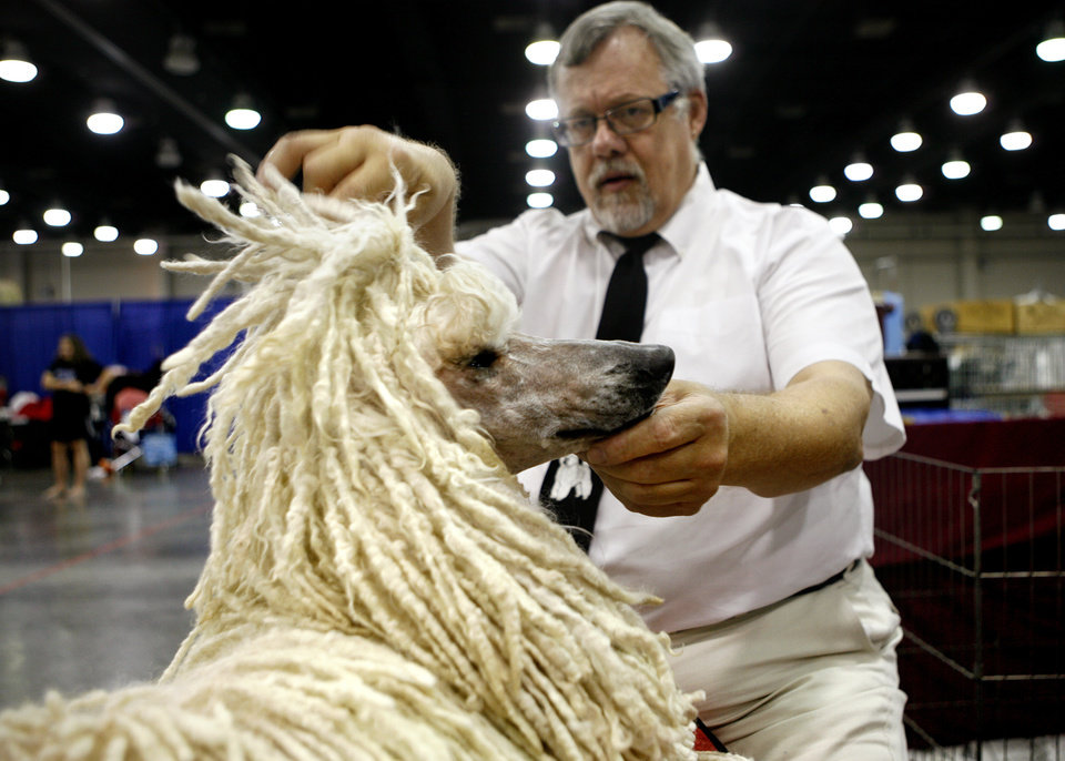 David Brock, 60, inspects his standard poodle Paige's cords at the Oklahoma City Dog Show at the Cox Convention Center in Oklahoma City Friday, June 26, 2009. Brock cords her hair instead of poofing it because it is a different style which will make her stand out.  Photo by Ashley McKee, The Oklahoman