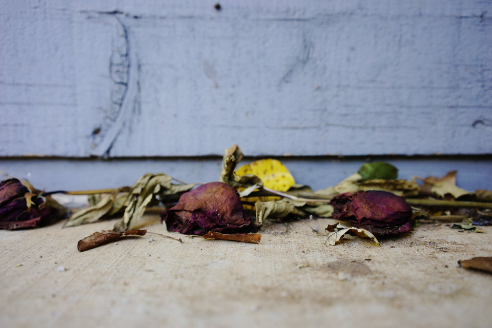 Photo - Dried roses lay bundled together in front of the apartment where 19-year-old Jacob Crockett was murdered by 21-year-old Stillwater resident Isaiah Marin on October 29, 2014. Photo by KT King, For the Oklahoman